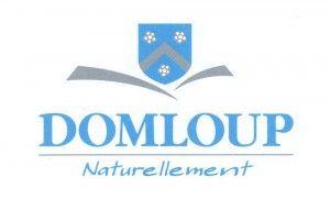 logo Domloup